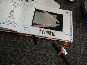 9 maanden boek Pauline Oud
