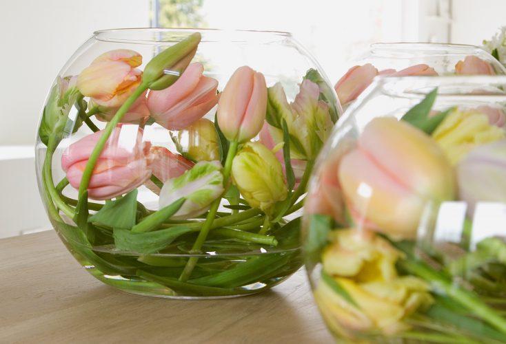 Pasen tulpen