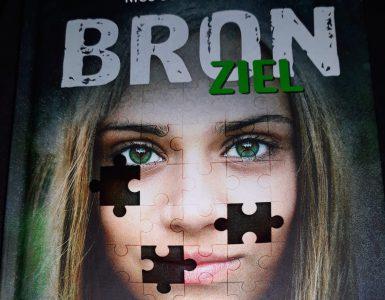 BRON- Ziel van Nico de Braeckeleer