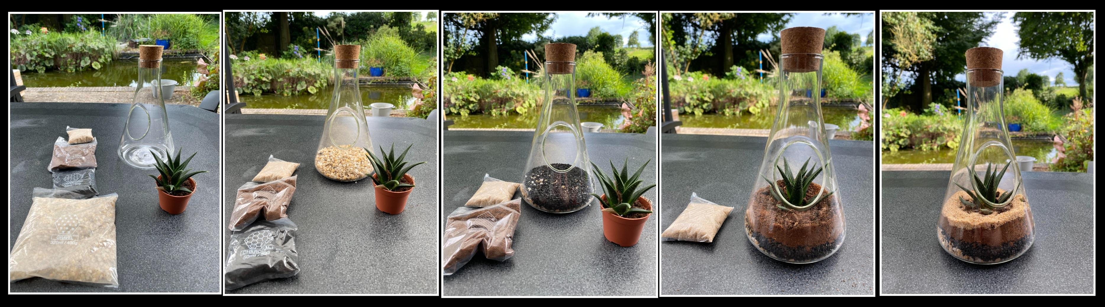 Chemistry terrarium collage