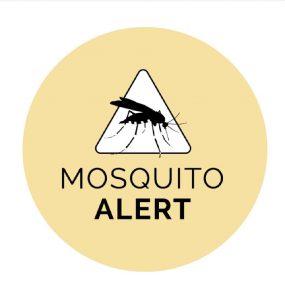 Mosquito Alert App